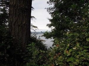 Saxe Point Park