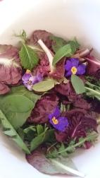Back Yard Salad