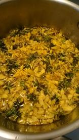 Forsythia & Dandelion Flowers