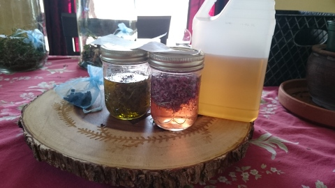 Lilac & Dandelion Flower Vinegar