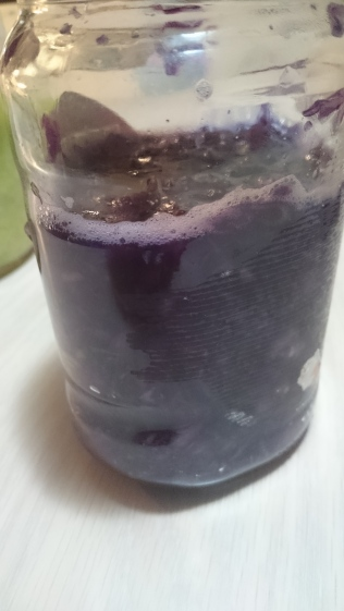 Red Cabbage fermenting in Mason Jar