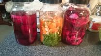 Creating natural probiotics