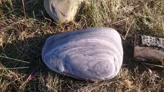 Beautiful Yin Shaped Stone