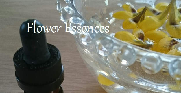 Flower Essences 1