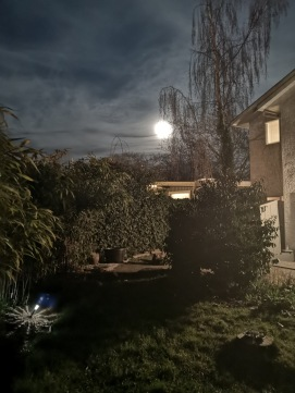 March 20th Full Moon on Spring Equinox